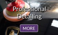 Professional Detailing