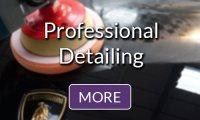 Professional Detailing