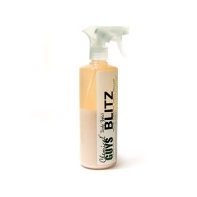 Chemical Guys - BLITZ Acrylic Spray Sealant